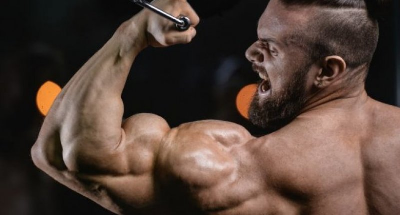 steroid in men regularly
